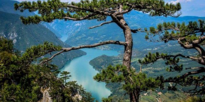 SRBIJA BOGATA ARHEOLOŠKIM NALAZIŠTIMA: Šest njih se POSEBNO ISTIČU
