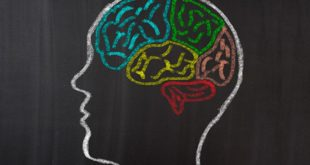 Male tajne uspešne komunikacije: 7 trikova da izgledate pametnije dok govorite!