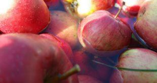 Ako pojedete samo jabuku dnevno, zaboravićete na lekare