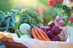Maxi – čarolija zdrave hrane, Gradski Magazin