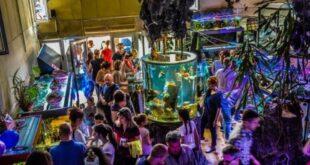 U Javnom akvarijumu i tropikarijumu Beograd svakodnevno možete videti ribe, životinjice i biljke iz svih krajeva sveta!