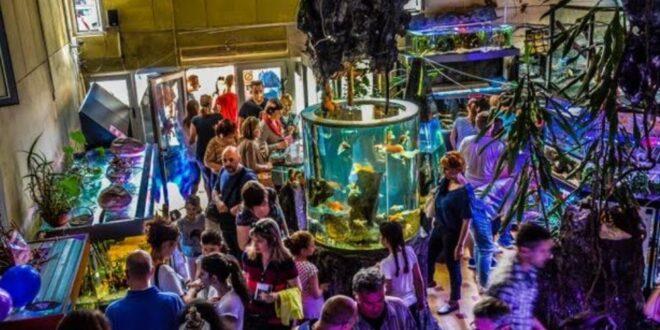 Javnom akvarijumu, U Javnom akvarijumu i tropikarijumu Beograd svakodnevno možete videti ribe, životinjice i biljke iz svih krajeva sveta!, Gradski Magazin
